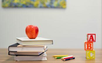 digital media uddannelse
